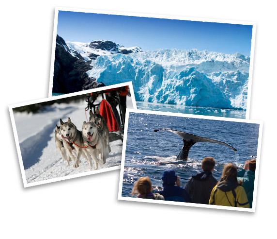 Alaska Land Only Vacation Packages Alaska Tour Travel