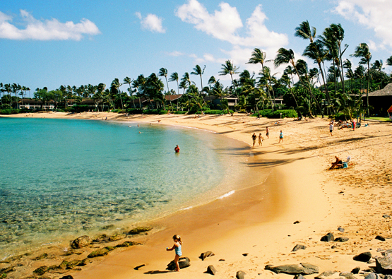 Affordable Tours To Hawaii