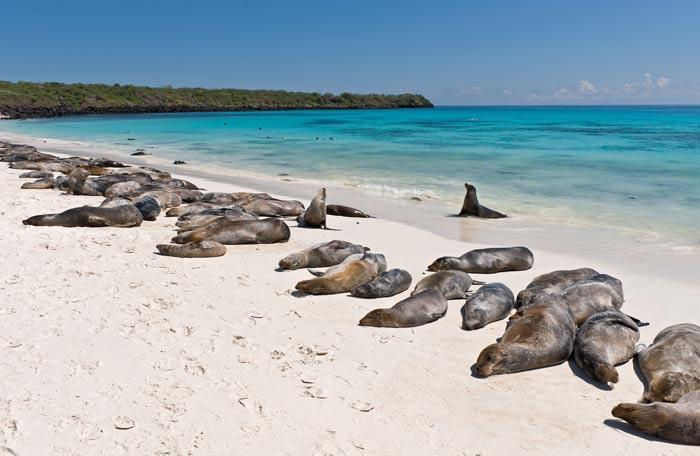 Galapagos_cruisetour