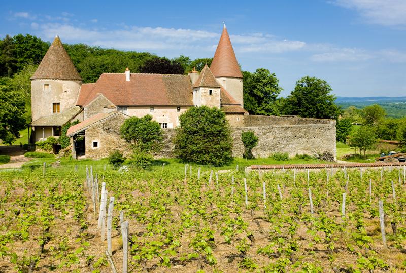 burgundyfrance2