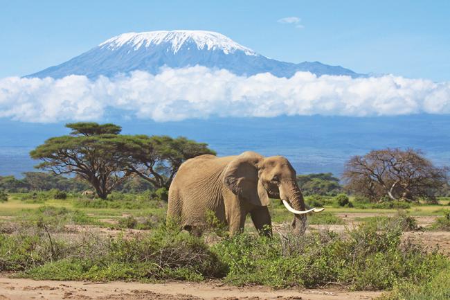 Tauck_Kenya_Kilimanjaro