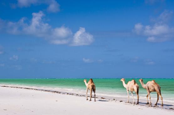 Zanzibar-Tanzania2