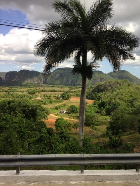 Tauck Cuba- View of Landscape