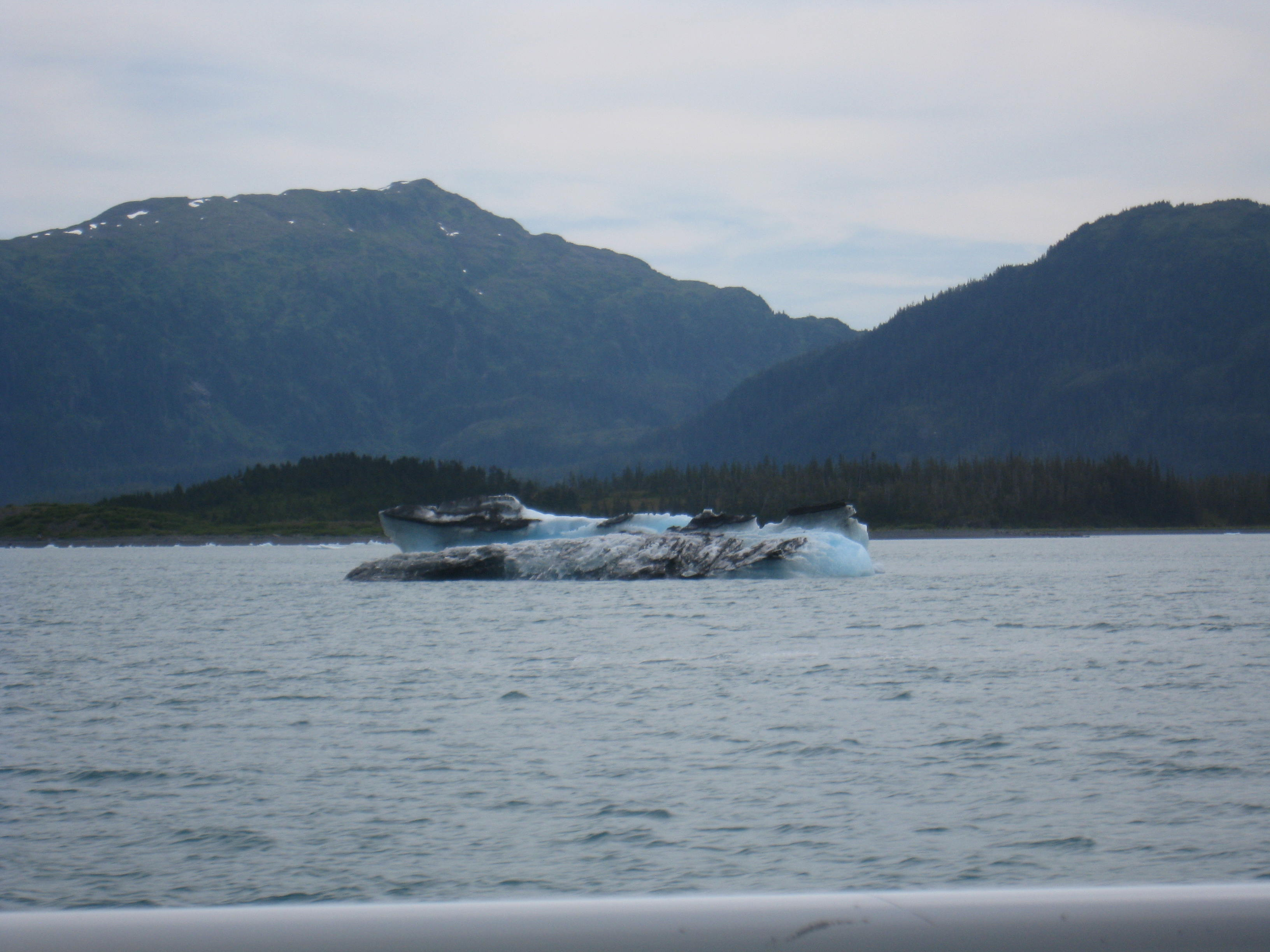 Spectacular Alaska - Whale Watching
