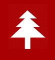 christmas-tree-img_2016-12-15
