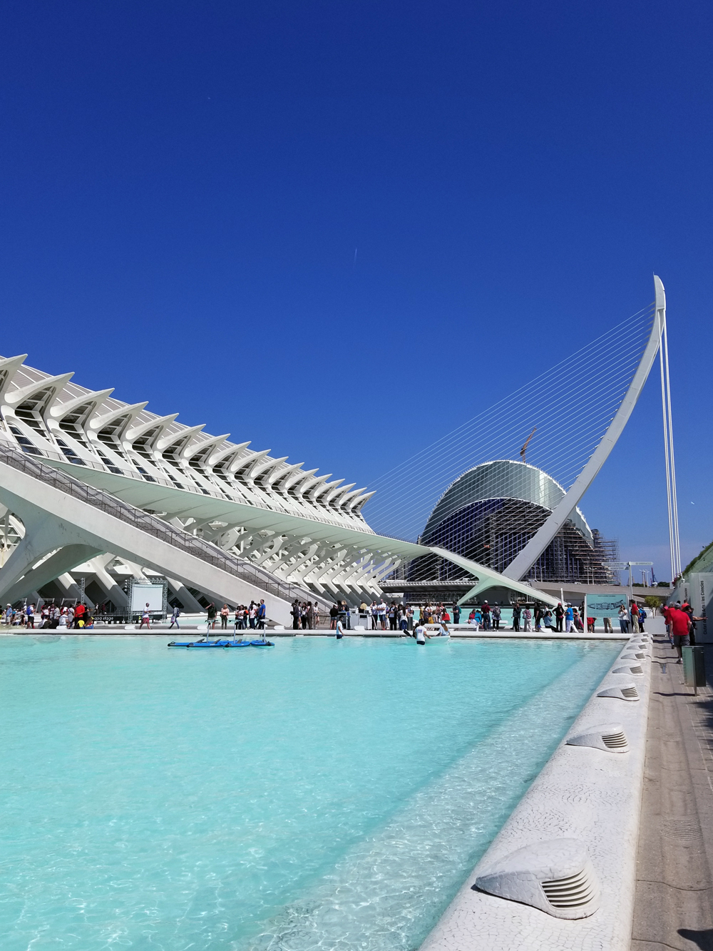 Spanish Wonder With Trafalgar